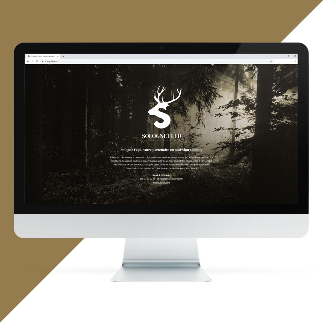 création site web vitrine Orléans